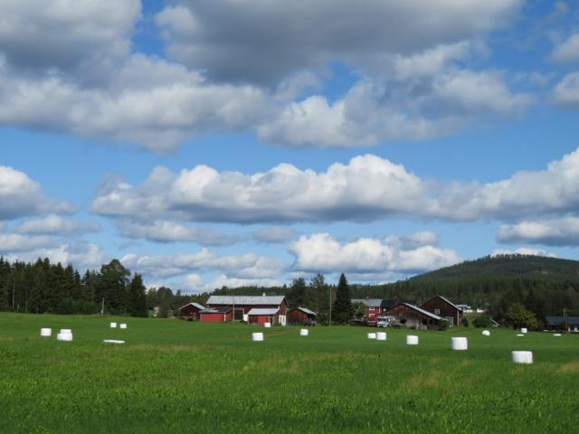 St Olavsweg